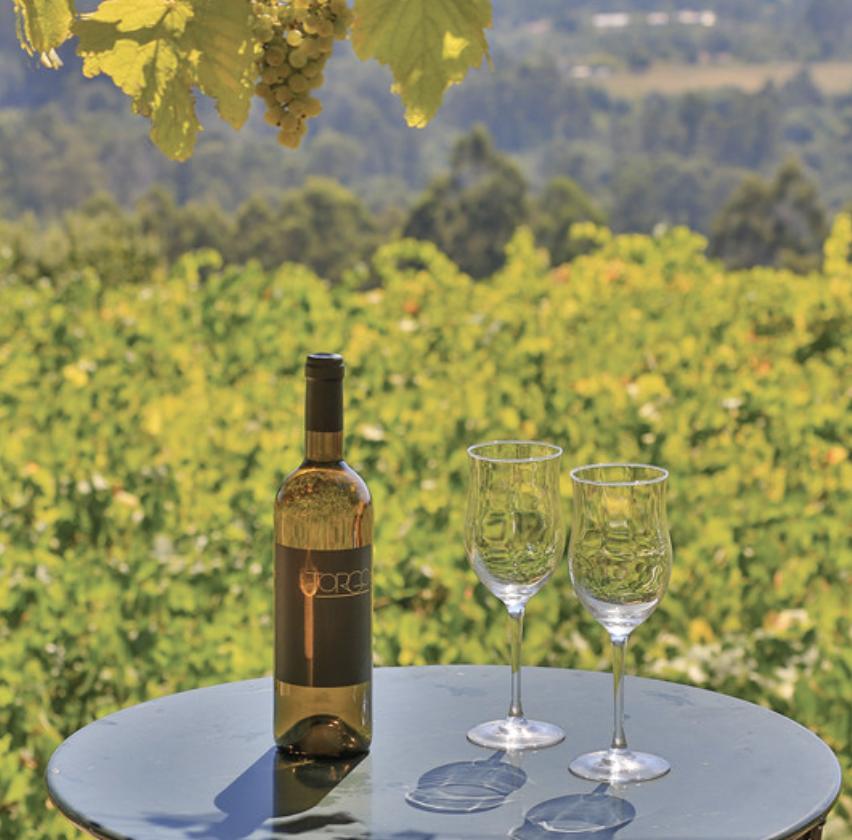 vino en galicia